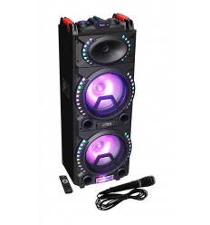 PARTY - 2x10'' ACTIVE BOX WITH LED EFFECTS REC/US